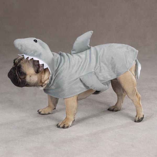 dog-shark-costume & dog-shark-costume | The Dogs and Cats Blog 4-Legged.com