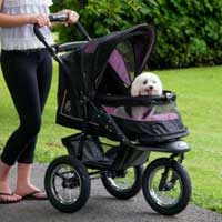 Dog Strollers The New Generation