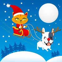 Happy Christmas To all pets
