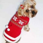 Winter and Holiday Dog Sweaters