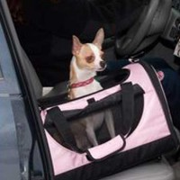 Car Seat and Pet Carrier In One
