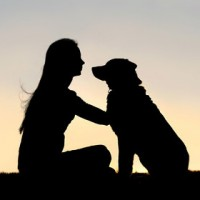 Dog and Owner Connection Benefits