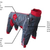 Zippy-Dog-Overall-Technology-info
