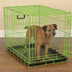 crating your dog (pet)