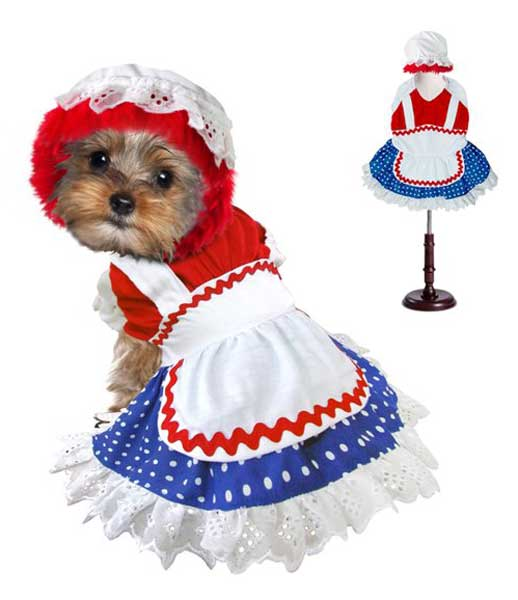 dog costume ragdoll girl