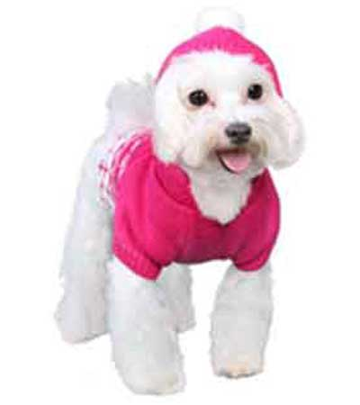 b6784a844de9 Dog Snowflake Sweater hoodie with fur ball