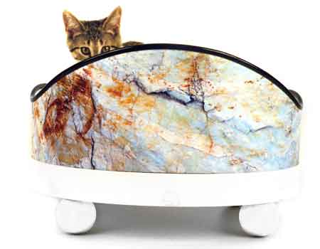 Dog Beds Aqua Rocks Graphic Design