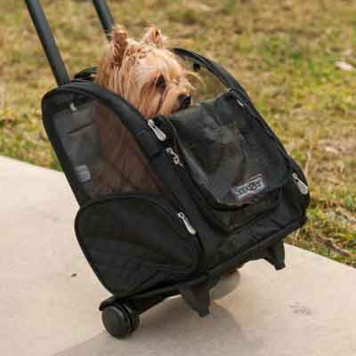 Black Pet Carrier Stroller Backpack