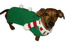 Candy Cane Dog Scarf Sweater