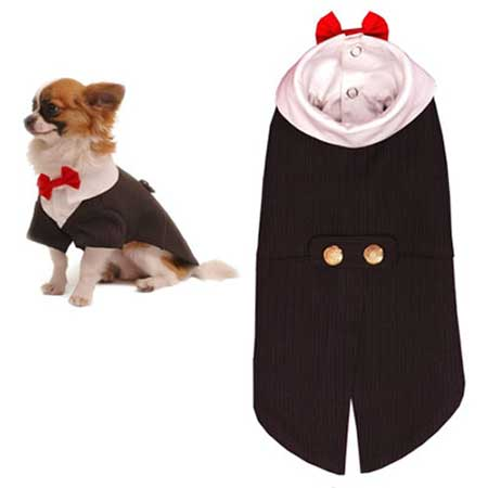 Three-Button Dog Tux