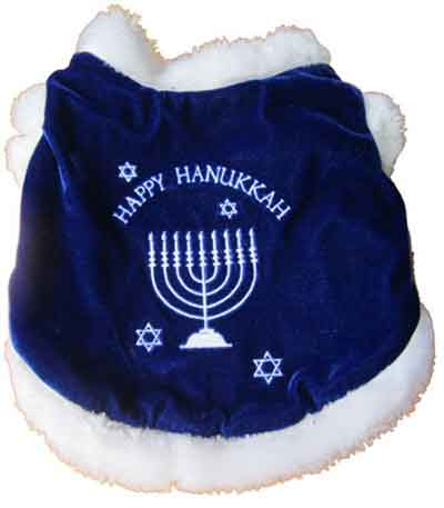 Happy Chanukah Costume
