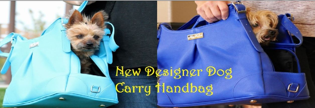 Designer Carry HandBag