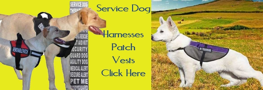 Service Dog Harness and Vest